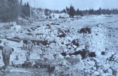 Early shoreline photo, taken between 1938 and 1956